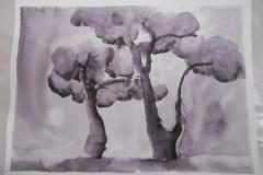 Cours de dessin - Encre de chine - L'arbre - 2015 - 2016 - 12