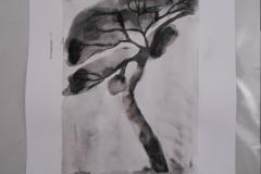 Cours de dessin - Encre de chine - L'arbre - 2015 - 2016 - 36