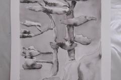 Cours de dessin - Encre de chine - L'arbre - 2015 - 2016 - 41
